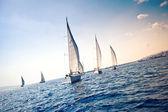 帆船游艇 — 图库照片