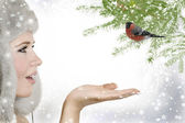 Snow Princess and bullfinch — Stock Photo