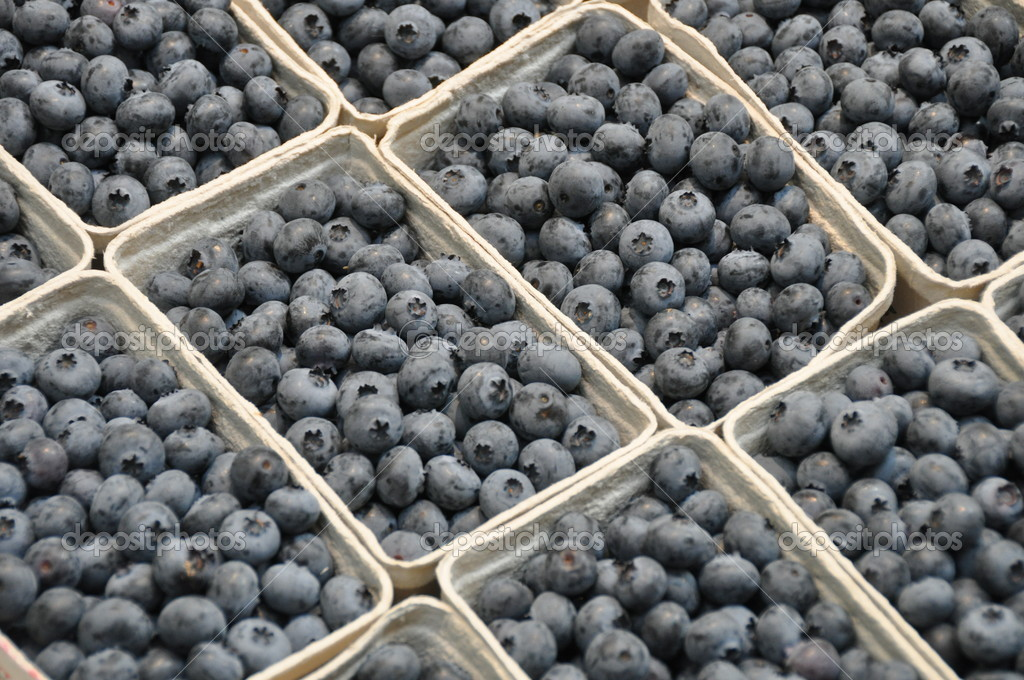 Closeup of blueberries for sale in boxes  — Stock Photo #6962646