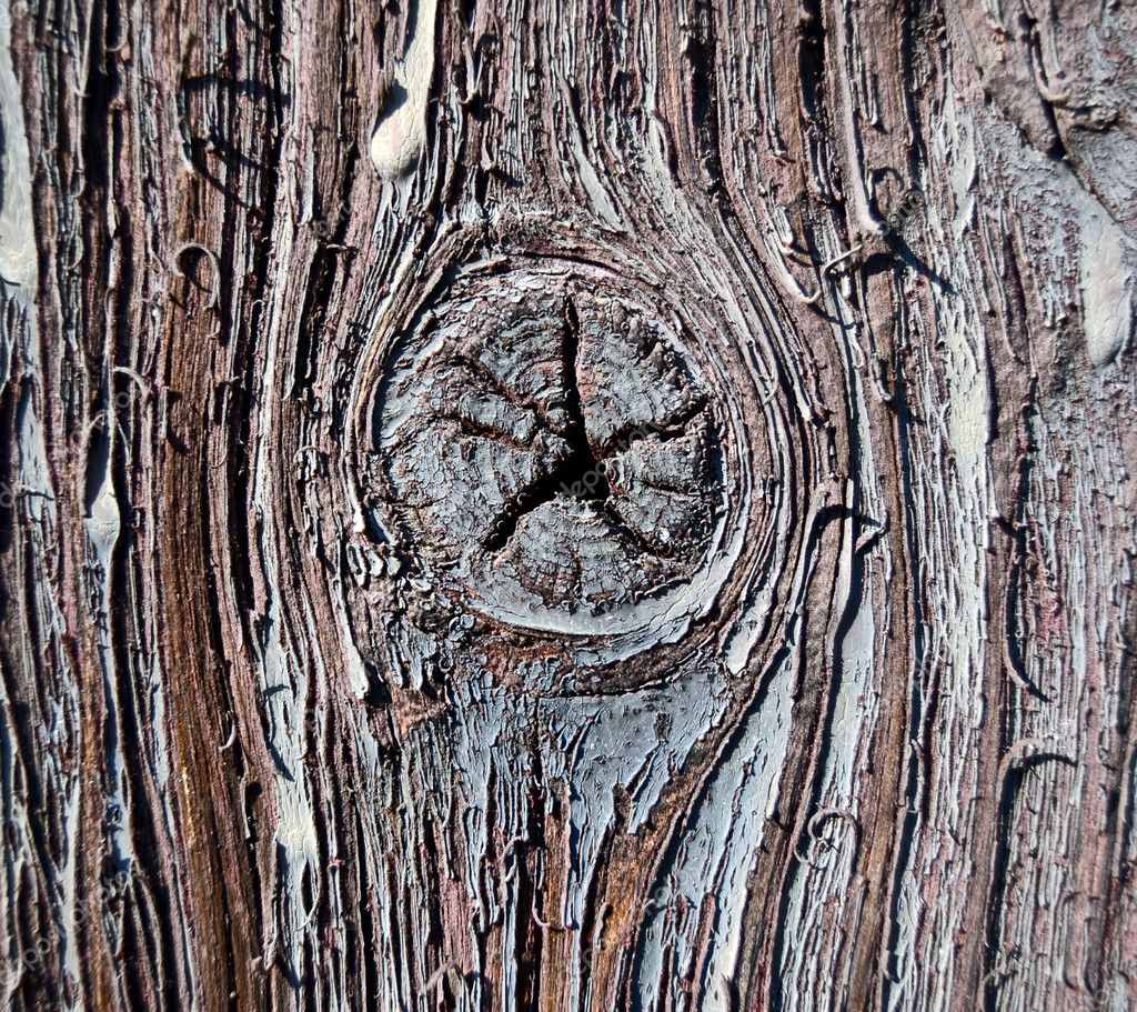 Old wood background texture — Stock Photo #7681314