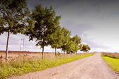 Camino de ripio rural. alambre de alto voltaje. — Foto de Stock