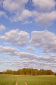 ıssız yol bulutlu bir gökyüzü. — Stok fotoğraf