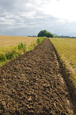 Freshly plowed field furrow. — Stock Photo