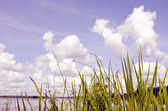 View of lake and sky. — Stock Photo