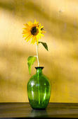 Sunflower in glass on yellow wall background. — Stock Photo