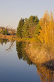 Lake with reflection of colored leaves trees. — Stock Photo
