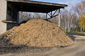 Biomass fuels. Chipped wood. Natural fuels. — Stock Photo
