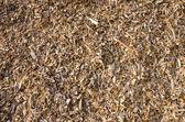 Fond de combustibles bois shavings.biomass. — Photo
