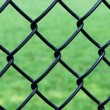 Iron wire fence isolated on green background — Stock Photo