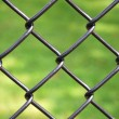 Royalty-Free Stock Photo: Iron wire fence isolated on green background