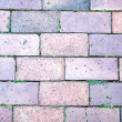 Brick footpath background. - Photo