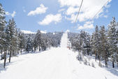 View on black ski-route in Sarikamis. Turkey — Stock Photo