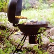 Grill chicken on barbeque isolated forest — Stock Photo #7399796