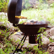 Grill chicken on barbeque isolated forest - Stock Photo