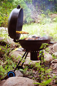 Grill chicken on barbeque isolated forest — Stock Photo