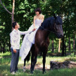 Bride and groom posing in the garden with a horse — Stok fotoğraf