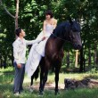Bride and groom posing in the garden with a horse — Foto Stock