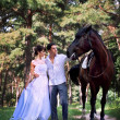 Bride and groom posing in the garden with a horse - Stock Photo