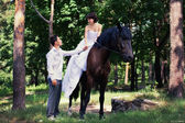Bride and groom posing in the garden with a horse — Stock Photo