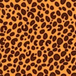 Stock Vector: Leopard seamless pattern