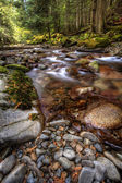 Rocky stream in mountains. — Stock Photo
