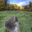 Boulder in a field. — Stock Photo