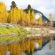 Fall colors off the river. — Stock Photo