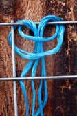 Blue rope on fence. — Stock Photo