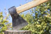 Picador de madera — Foto de Stock
