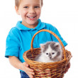 Little boy with kitty in wicker — Stock Photo