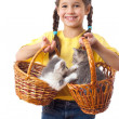Little girl with two kittens in wicker — Stock Photo