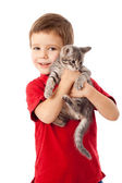 Little boy with gray kitty in hands — Stock Photo