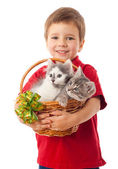 Little boy with two kittens in basket — Stock Photo