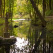 Ebro River Source - Stockfoto