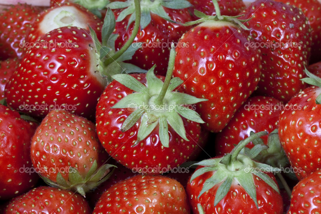 Strawberry. Testy  and sweet  berryes — Stok fotoğraf #6925996