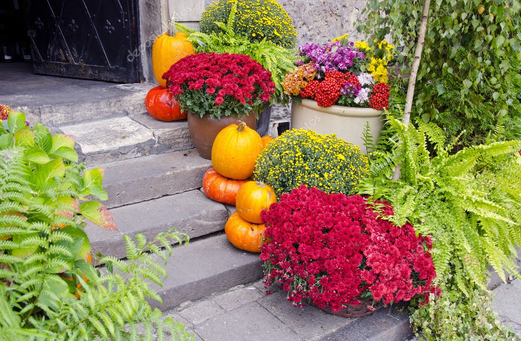 Flowers and pumpkins on street stair  Foto Stock #7187104
