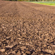 Landscape with october tillage — Stock Photo