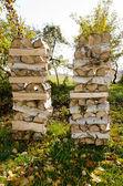Drewno w ogrodzie — Zdjęcie stockowe