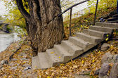 Staircase in the old city park — Stock Photo