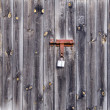 Wooden door background — Stock Photo #7520906