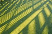 绿色体育领域合成背景 — 图库照片