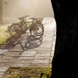Morning mist in the park and bicycles - Stock Photo