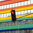 Stock Photo: Stoplight in street and crow