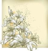 Fond floral avec fleur de Lys, main de dessin — Vecteur
