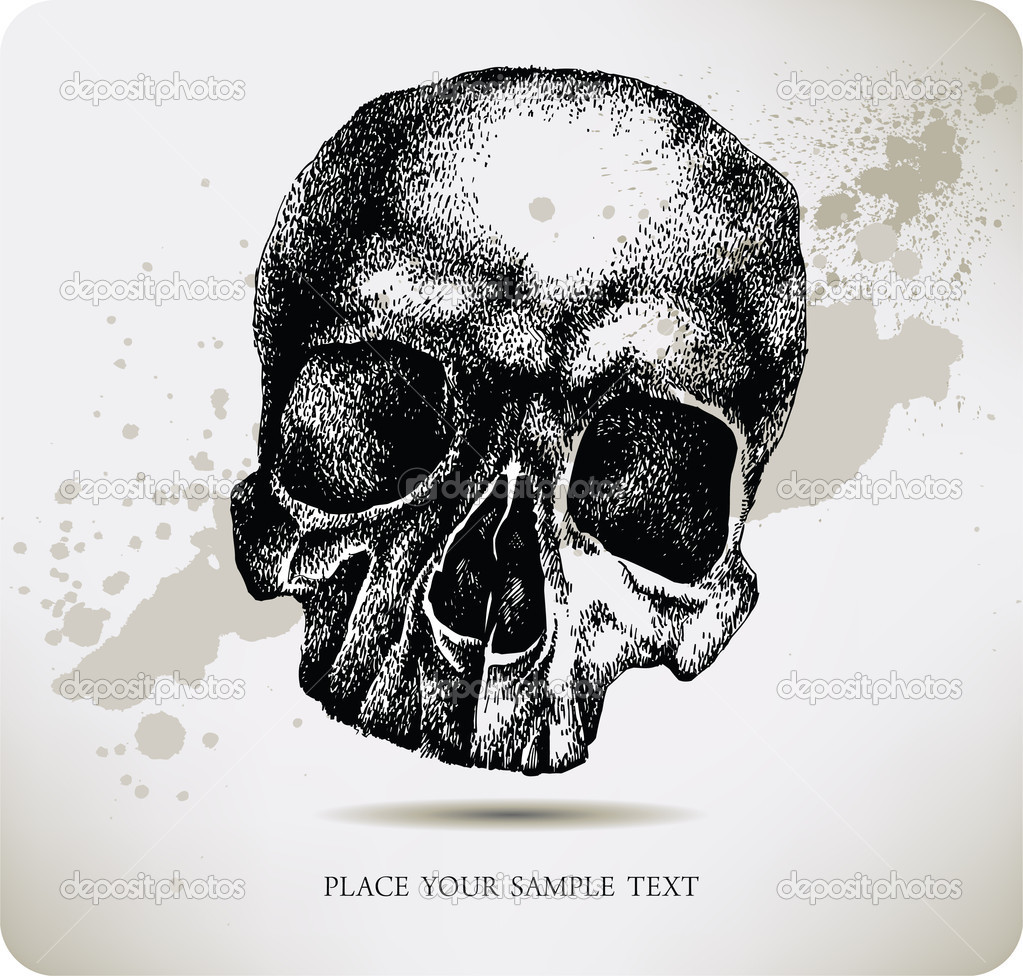Skull hand drawing. Vector illustration. — Stock Vector #7627258