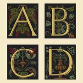 Sixteenth-Century alphabet A B C D — Stock Vector