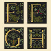 Sixteenth-Century alphabet E F G H — Stock Vector