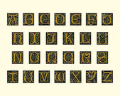 Alphabet of early 16th century — Vector de stock
