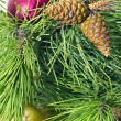 Pine branches with New toys — Stock Photo #7632532