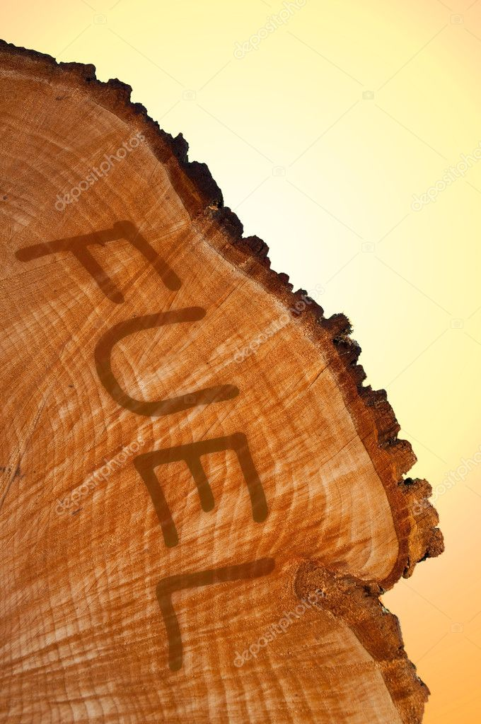 Cross section of tree trunk with word 'FUEL' . Warm light background. — Stock Photo #6887333